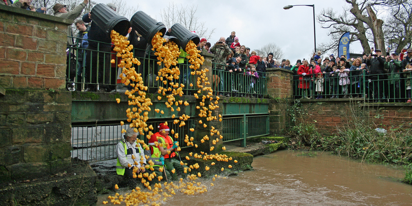 Kenilworth Duck Race